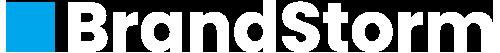 brandstorm logo